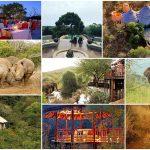 agence séminaire afrique du sud thanda