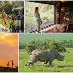 seminaire safari angleterre
